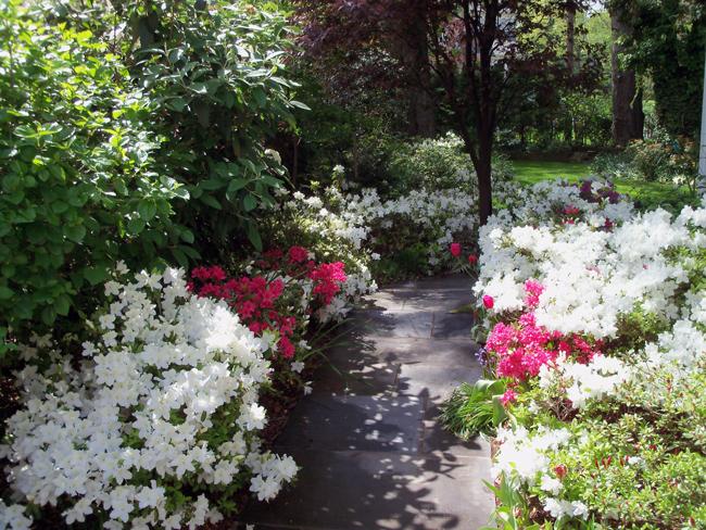 2-Garden